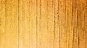 Landen Sie im Ruhezustand nach der Ernte, die wartet, in Israel gepflogen zu werden stockfoto