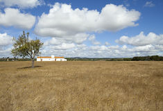 Landescape of Alentejo Royalty Free Stock Photo