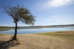 Landescape of Alentejo Royalty Free Stock Photos