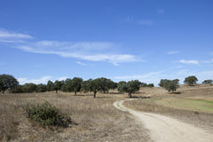 Landescape of Alentejo Royalty Free Stock Images