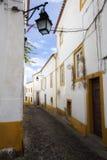 Landescape of Alentejo Stock Photography