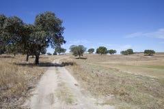 Landescape of Alentejo Stock Image