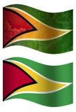 Landesflagge Guyanas 3D, zwei Arten lizenzfreie abbildung