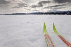 landet skidar sportvinter x Royaltyfri Fotografi