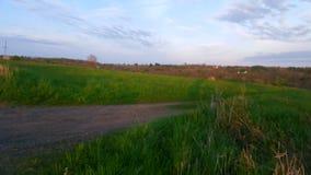 Landfeld Stockbilder