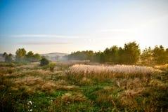 Landfeld am Sonnenaufgang Lizenzfreie Stockbilder
