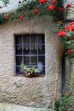 Landfenster Whiteisenstangen und kletternde rote Rosen draußen Stockfoto