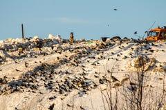 landfill Arkivbilder