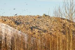 landfill Fotografering för Bildbyråer