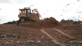 Landfill covering ground. Truck in a landfill covering trash with dirt / soil stock footage