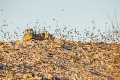 Landfill Stock Photography