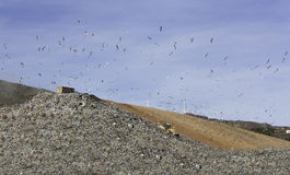 Landfill. For municipal waste recycling Cartagena, Murcia, Spain Royalty Free Stock Images