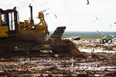 Landfill rubbish bulldozers processing garbage Royalty Free Stock Image