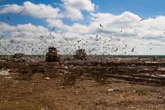 Landfill rubbish bulldozers processing garbage Stock Photos