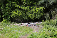 Landfill between trees and palms Royalty Free Stock Photos