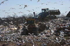 Landfill work Stock Images