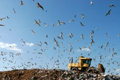 Landfill Working Royalty Free Stock Images