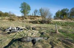 Landforms en hout Royalty-vrije Stock Fotografie