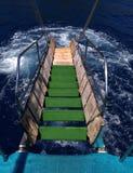 Landgången är gröna moment som leder till havet Arkivbild