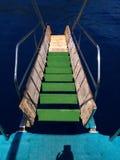 Landgången är gröna moment som leder till havet Arkivfoto