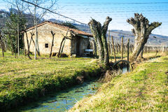 Landhäuschen in einem italienischen Weinberg im Herbst Lizenzfreies Stockfoto