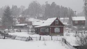Landhäuser nahe Wald während der Schneefälle am Wintertag stock video