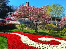 Landhaus im Garten und in den Blumen Stockfotografie