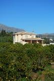 Landhaus und Orangenbäume, Andalusien, Spanien. Lizenzfreie Stockfotografie