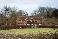 Landhaus und Schafe in England Stockfotos