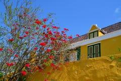 Landhouse en le Curaçao photographie stock libre de droits