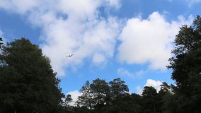 Landing airplane above trees stock video footage
