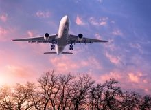 White passenger airplane is flying in the purple sky stock image