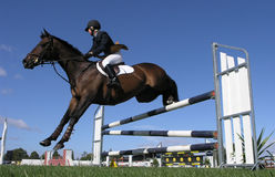Landing Gear Down. A horse clearing a jump. Taken at the Horse of the Year 2007 in Hastings, New Zealand Stock Photos