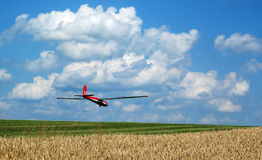 Landing glider. Glider lands on field airport in beautiful summer weather Royalty Free Stock Photos