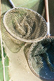 Landing nets Royalty Free Stock Photography