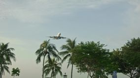 Landing plane. In the Changi stock video