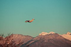 Landing private airplane against the background of Royalty Free Stock Images