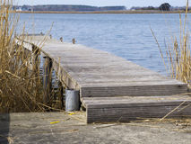Landing stage with reeds Stock Photos