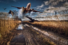 Landing strip Royalty Free Stock Images