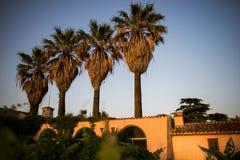 Landlandhaus- und -palmen lizenzfreies stockbild
