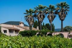 Landlandhaus- und -palmen stockfoto