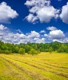 Landlandschaft. Heu im fieldloudy Himmel des Herbstes Stockbilder