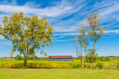 Landlandschaft mit Stall und Tabakanlagen stellen auf Stockfotografie
