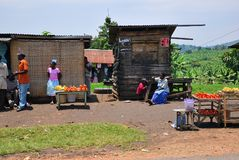 Landleben in Uganda, Afrika Stockfotografie