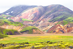 landmannalaugar的冰岛 库存照片