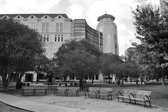 Landmark, Black And White, Tree, Monochrome Photography Stock Photos