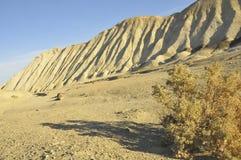 Landmark Borax Trail in Desert. Famous Borax Twenty-Mule Wagon Trail in Death Valley, California Royalty Free Stock Photos