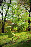 Landmark in the park. Green tack pinned royalty free stock photo