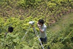 Landmeters het onderzoeken Royalty-vrije Stock Foto's