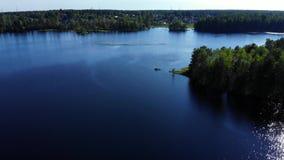 Landning på sjövatten, grön denceskog på sommardagen arkivfilmer
